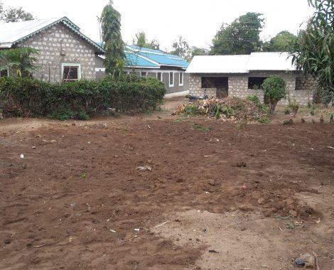 25 marzo - Il terreno a disposizione su cui iniziare a costruire